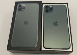Apple iPhone 11 Pro 64GB = $500, iPhone 11 Pro Max 64GB = $550,iPhone 11 64GB = $450, iPhone XS 64GB = $400 , iPhone XS Max 64GB = $430
